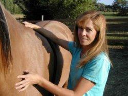 Certified Horse Temperament Master Temperament Consultants