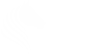Equestrian Health Products