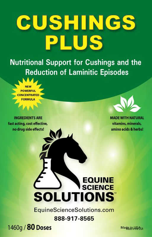 Provides Nutritional Support for Cushings in Horses