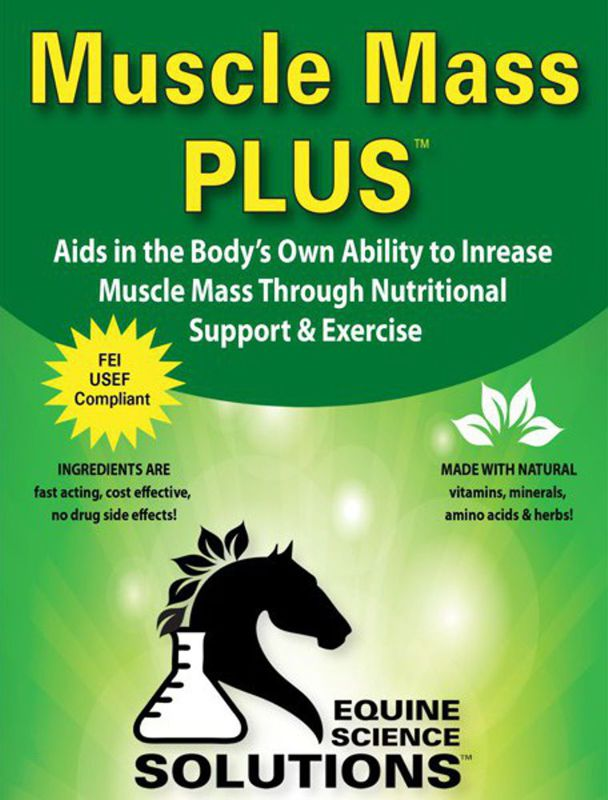Increase Your Horse's Muscle Mass, Health and Performance